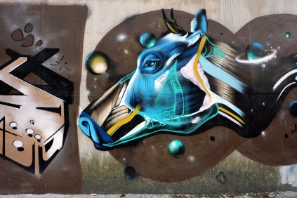 Bovine Anatomy (mid-autumn-graffiti-09202)