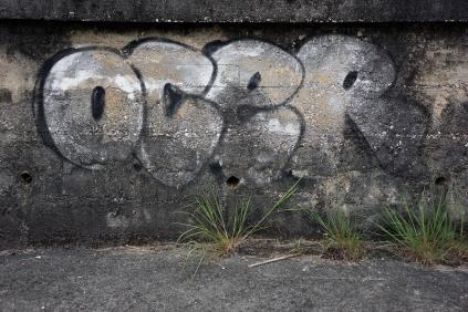tag-ocer-013361